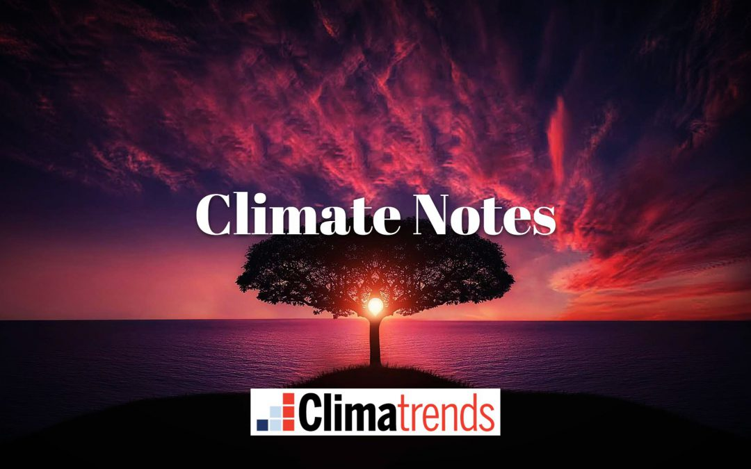 Will Warming Stop if Net Zero Emissions are Reached? –